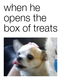 Treats yum yum - meme
