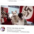 Hitler quase ganhou a guerra