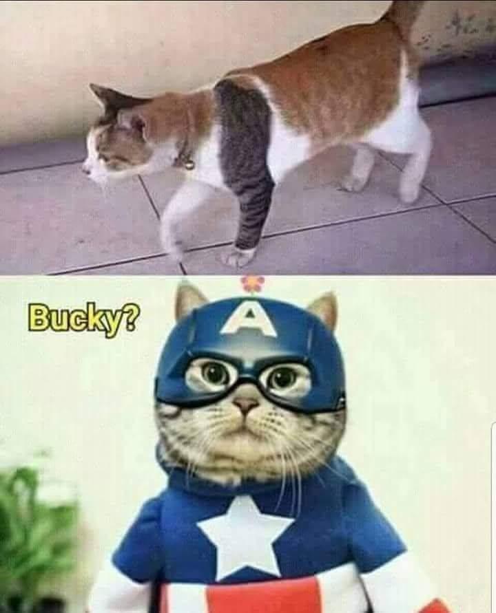 Facile à comprendre (niveau Marvel) - meme