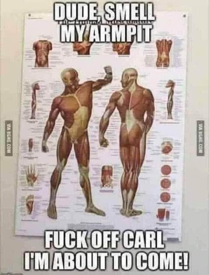 This made me laugh - meme