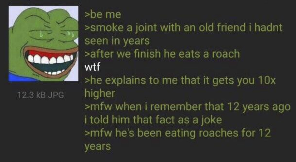 Context: A roach is the butt of a joint. His friend thought it meant Cockroaches. - meme