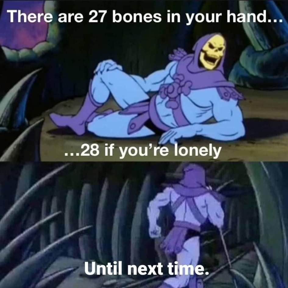 Skeletor facts - meme
