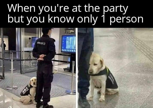 When you only know one person at the party - meme