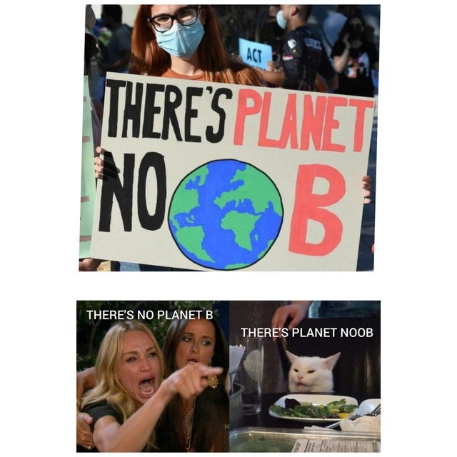 There is no planet B - meme