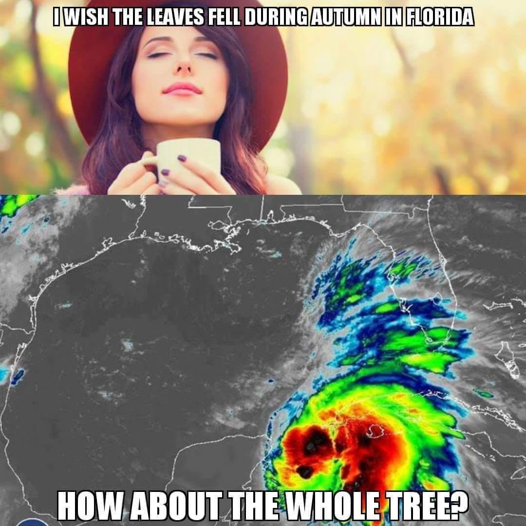 Fall in Florida - meme