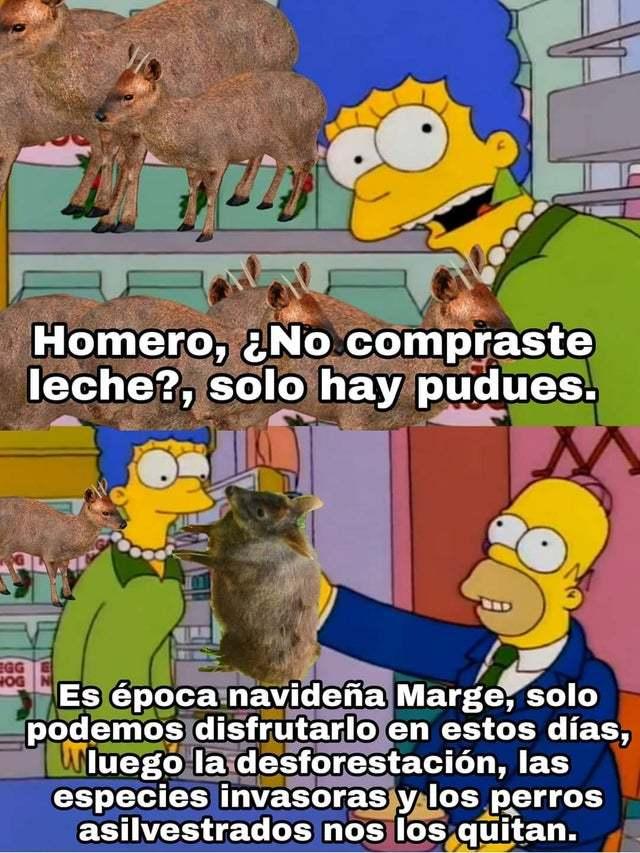 r/Chile be like: - meme