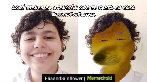 EN EFECTO SE LO MERECE ESTE ESTÚPIDO - meme