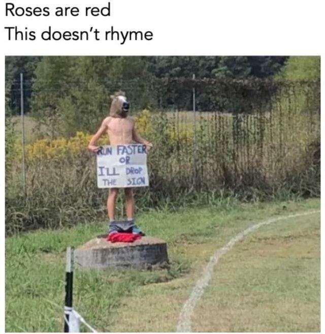 wait...NO - meme