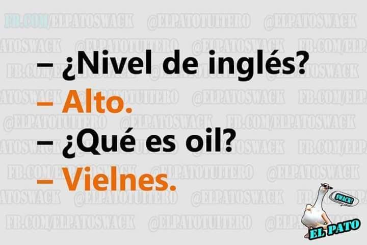 Experto políglota - meme