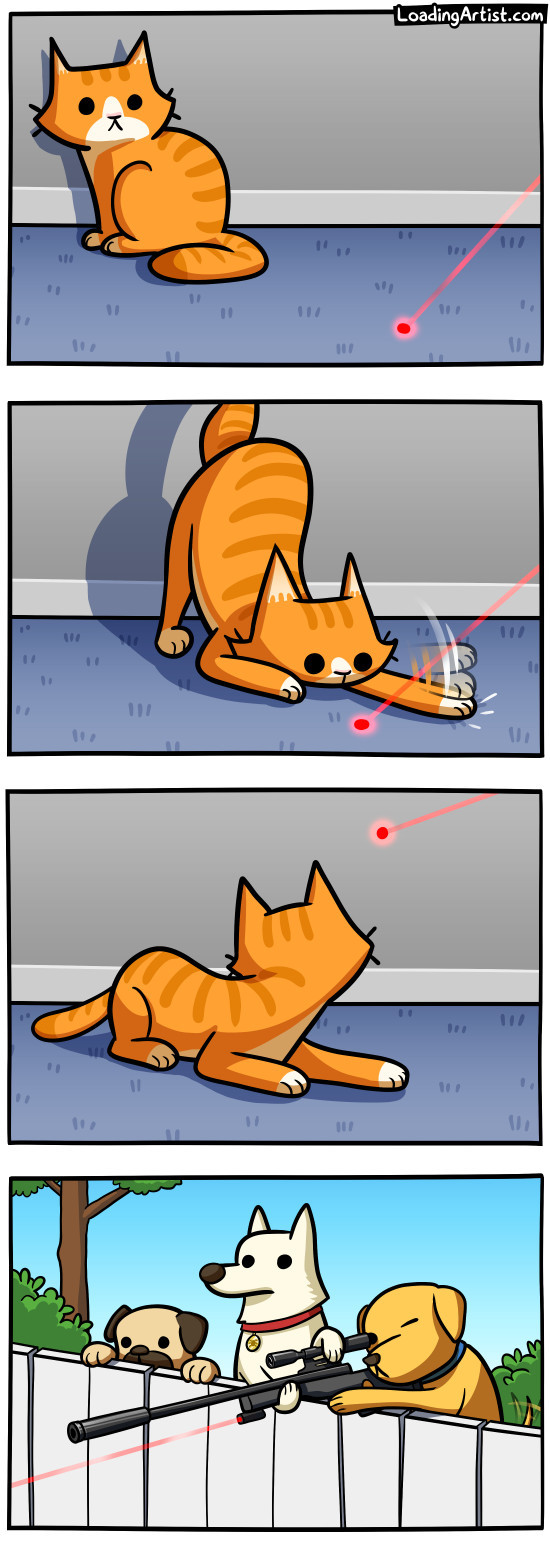 Cats and dots - meme