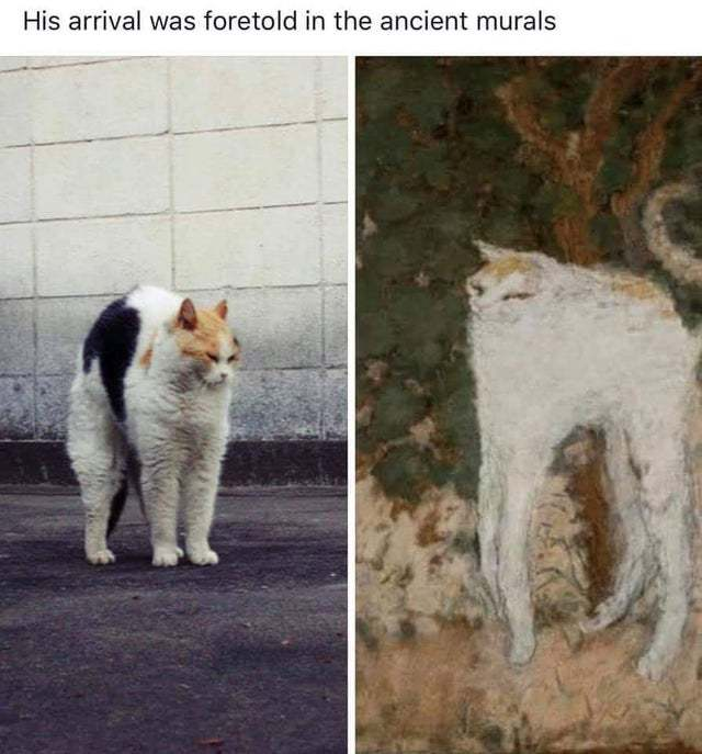 His arrival was foretold in ancient murals - meme