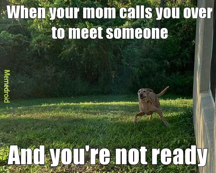 Not ready - meme
