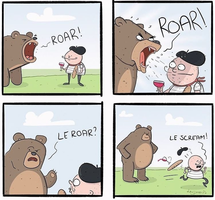 french bear - meme