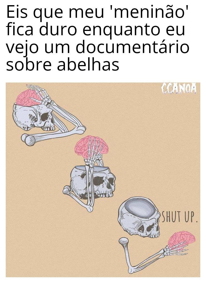 Abelhinha zzzz - meme