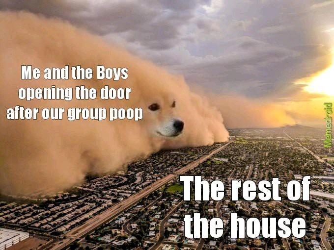 The Boys Group Poop - meme