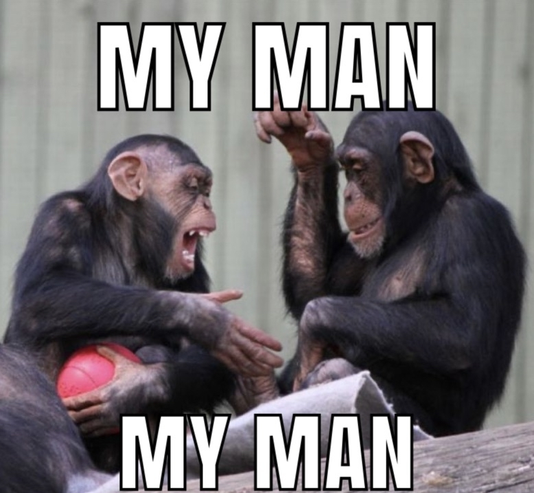 My man - meme