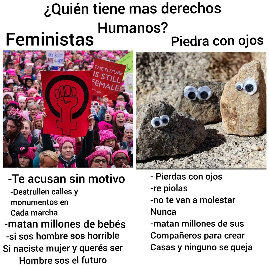 Feministas vs. Piedras con ojos - meme