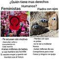 Feministas vs. Piedras con ojos