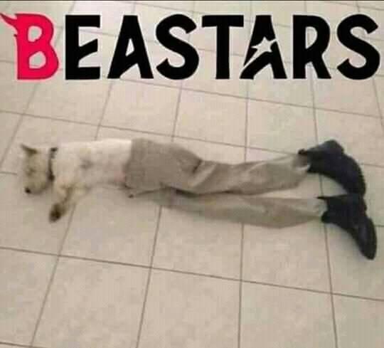 beastars - meme