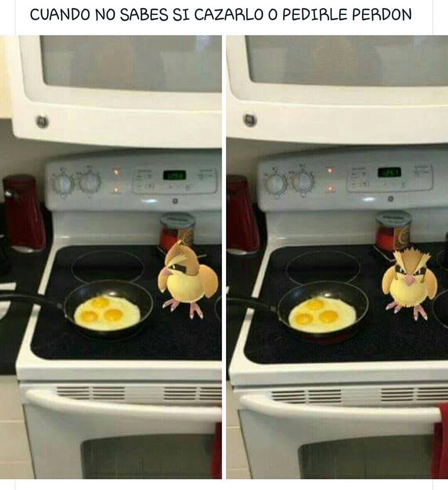 PokémonGo  - meme