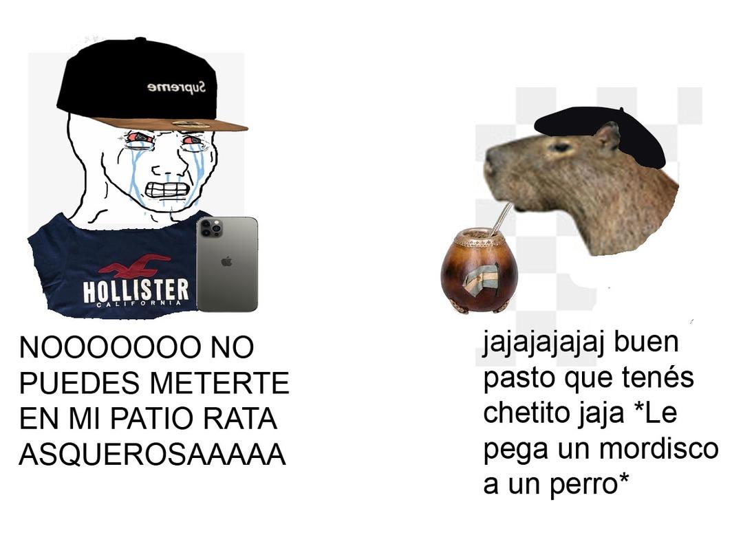 Un capo el carpincho jaja - meme