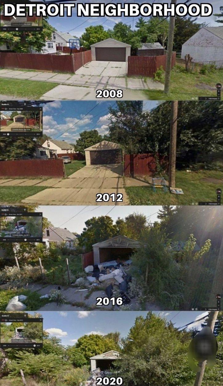 Nature reclaiming detroit neighborhood - meme