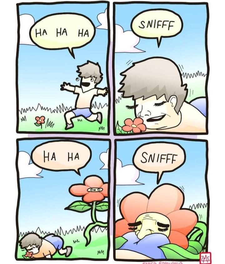 Flower - meme