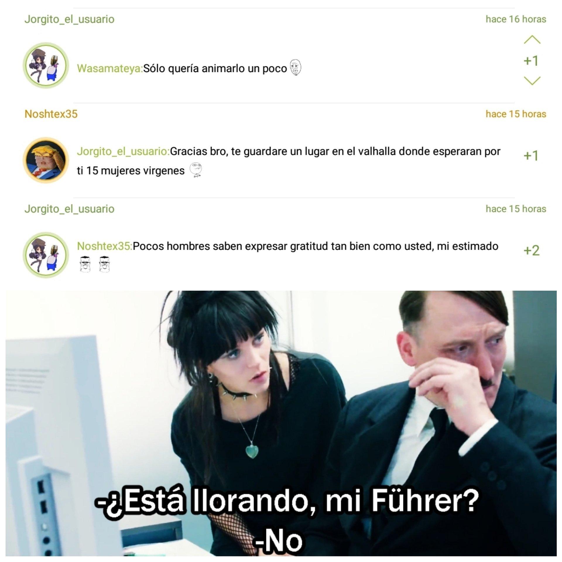 Mein Führer! - meme