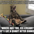 C'mon Ice-cream!