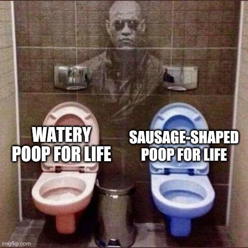 What kind of poop do you prefer? - meme