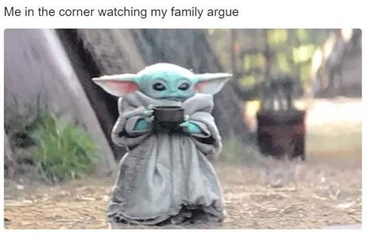 Ahh yess the nice fighting of family - meme