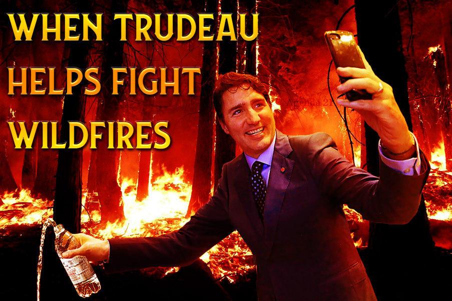 How trudeau fights wildfires - meme