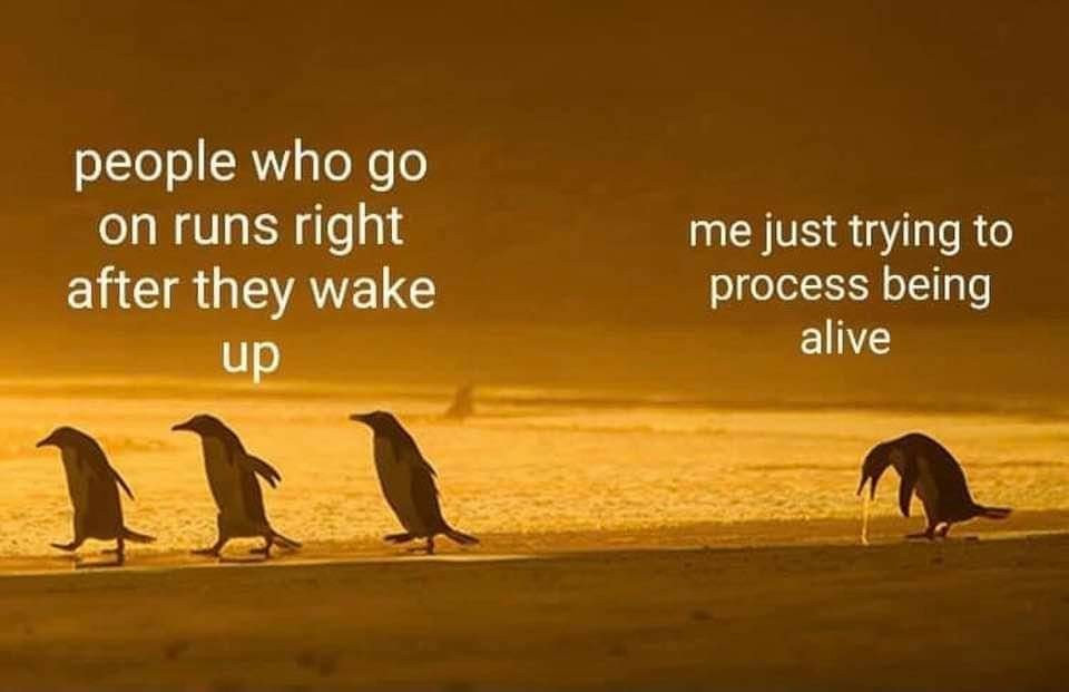 It takes me all day to be awake enough to function and then it's time for bed - meme