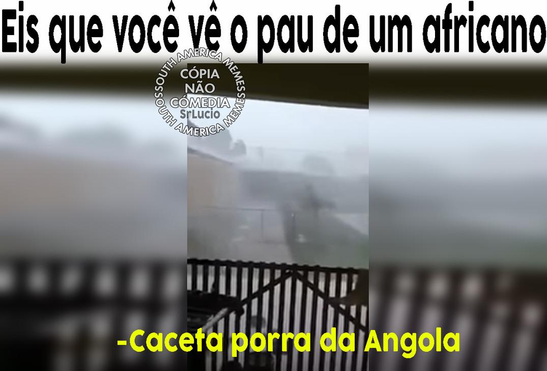 Caceta da Angola - meme