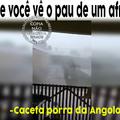 Caceta da Angola