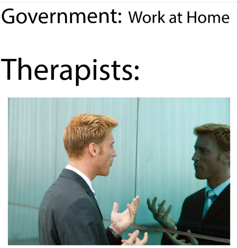 Government Work From Home - meme