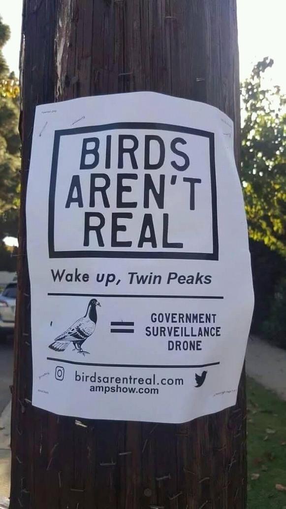 The People of Twin Peaks... - meme