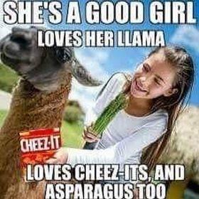 She's a Good Girl - meme