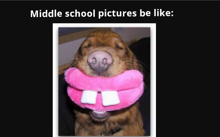 Middle school pictures be like - meme