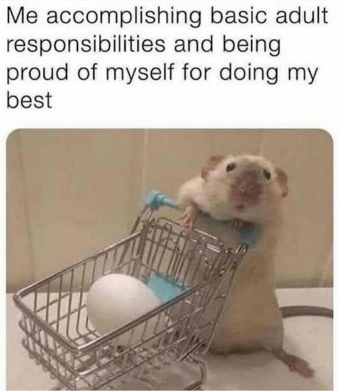Doing my best - meme