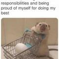 Doing my best