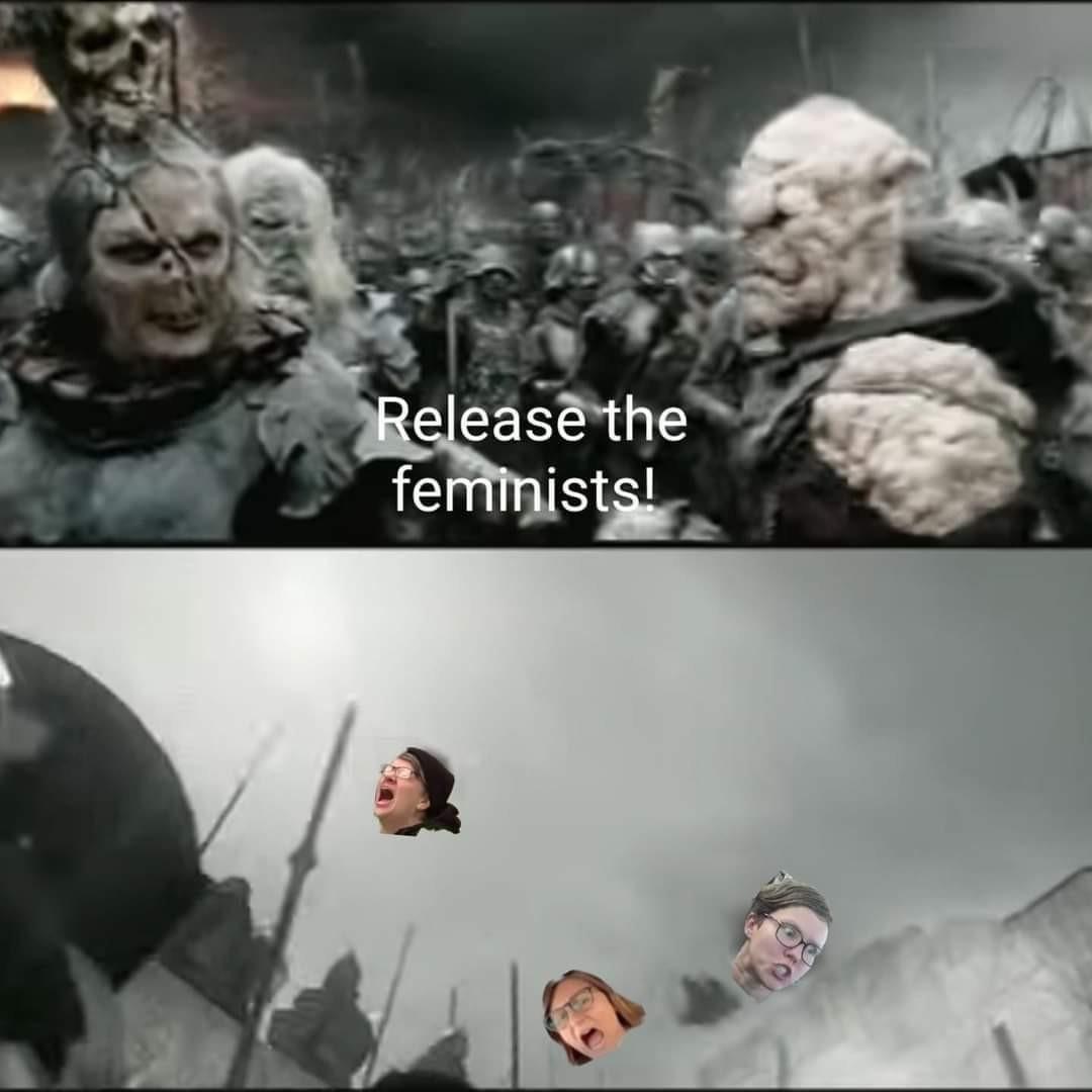 Full Feminist Attack - meme