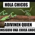 Mantis :V
