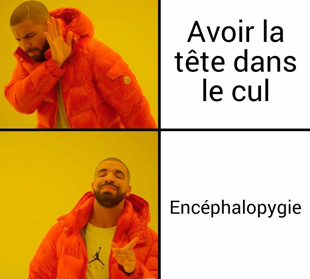 Encéphalopygie - meme
