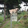 Heck the rules