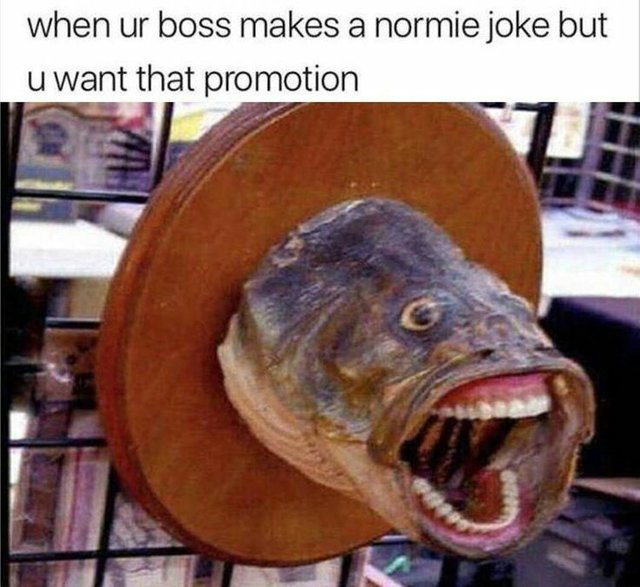 When your boss makes a normie joke but you want that promotion - meme