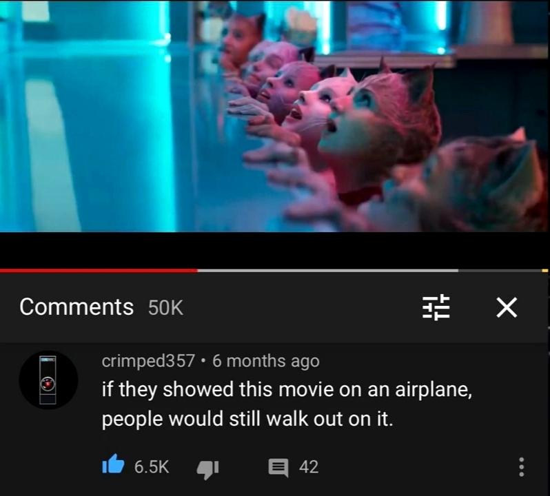 Bru fuck this cats movie - meme