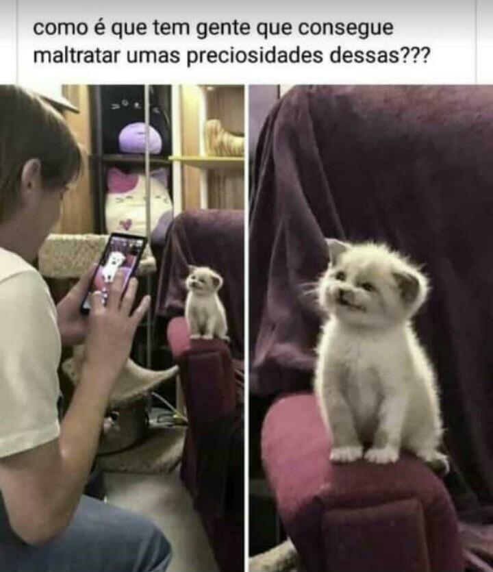 MDS Q LINDINHO N AGUENTO TANTA FOFURA - meme