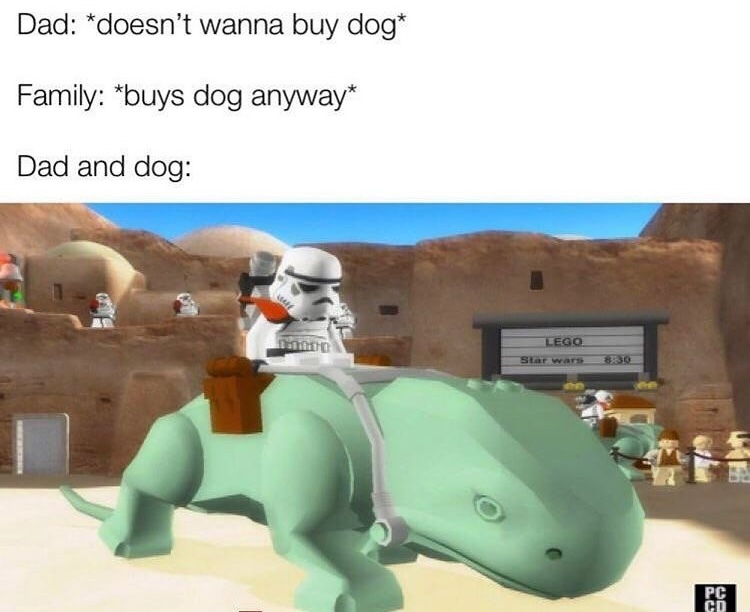 dad and the dog - meme