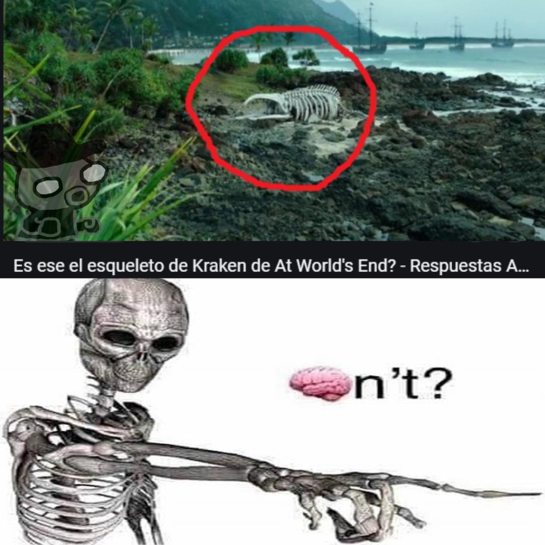 Imagina confundir el esqueleto de una ballena con un animal invertebrado - meme